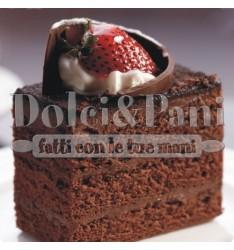 Preparato per Pan di Spagna al Cacao